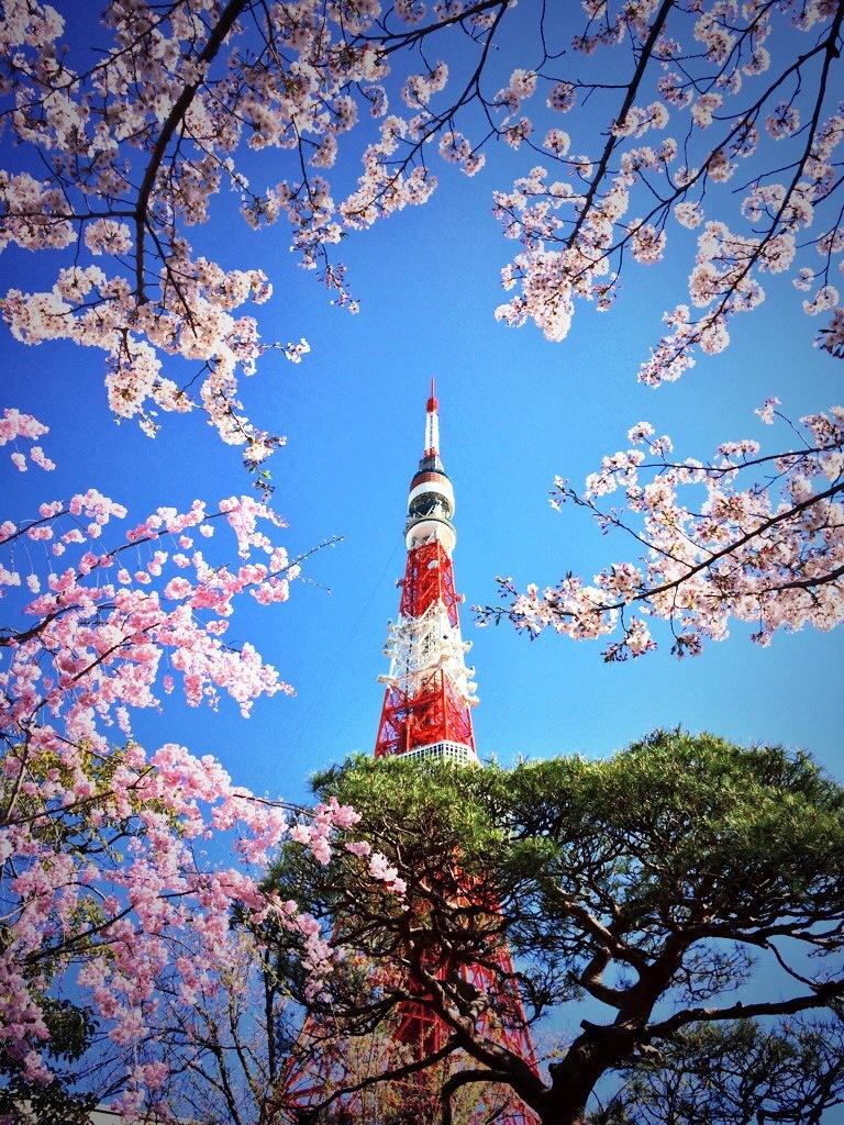 進む春、僕らも進む_e0071652_09021415.jpg