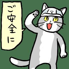 コロナで日本が学ぶべきアメリカ_d0240098_19491604.png