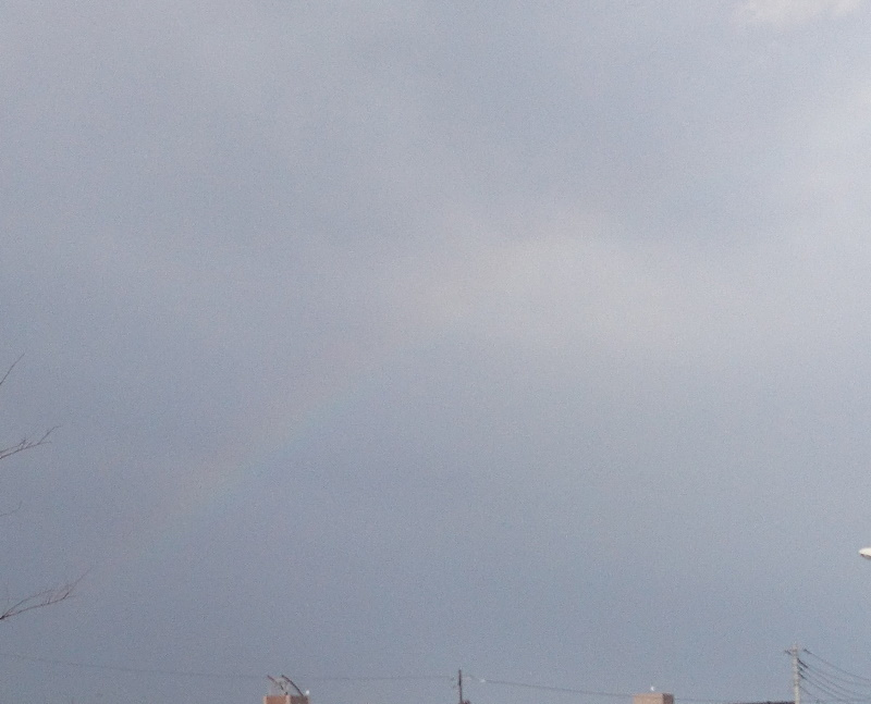 大雨のあと・・・_f0033598_17182209.jpg