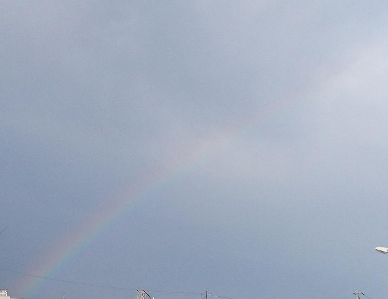 大雨のあと・・・_f0033598_17182735.jpg