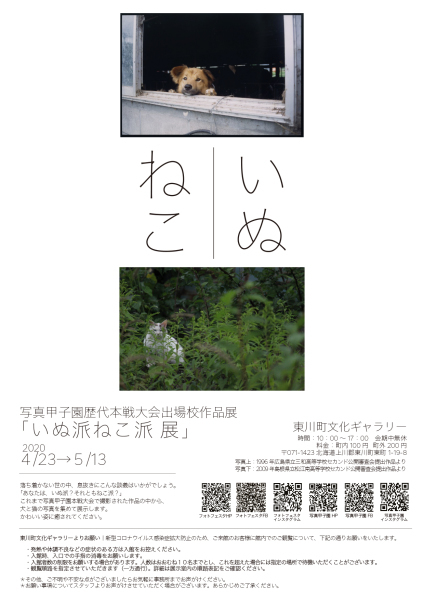 写真甲子園歴代本戦大会出場校作品展「いぬ派ねこ派 展」_b0187229_16440626.jpg
