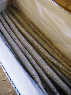 有機栽培の水田ごぼう 令和2年の出荷はGW明けから!栽培方法を変え長期にわたり出荷します!_a0254656_18222554.jpg