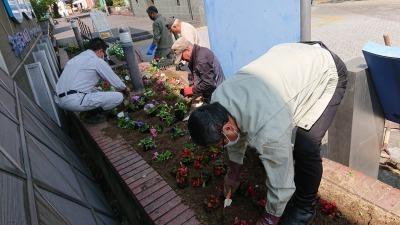 ガーデンふ頭総合案内所前花壇の植替えR2.4.15_d0338682_14385831.jpg