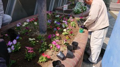 ガーデンふ頭総合案内所前花壇の植替えR2.4.15_d0338682_14424064.jpg