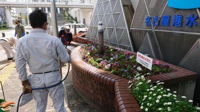 ガーデンふ頭総合案内所前花壇の植替えR2.4.15_d0338682_14425483.jpg