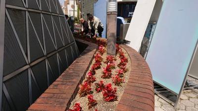 ガーデンふ頭総合案内所前花壇の植替えR2.4.15_d0338682_14430724.jpg