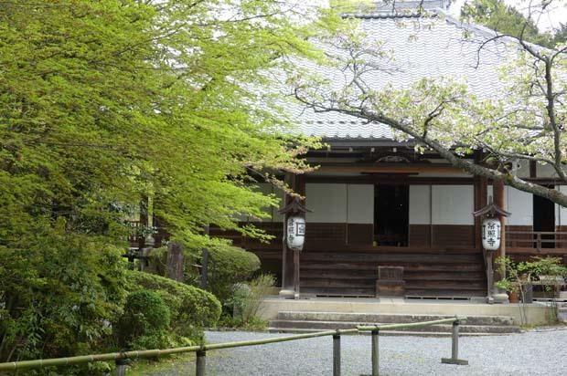 新緑の始まり 常照寺_e0048413_21083735.jpg