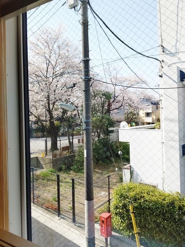 「大井の家」桜のたより_b0142417_09522785.jpg