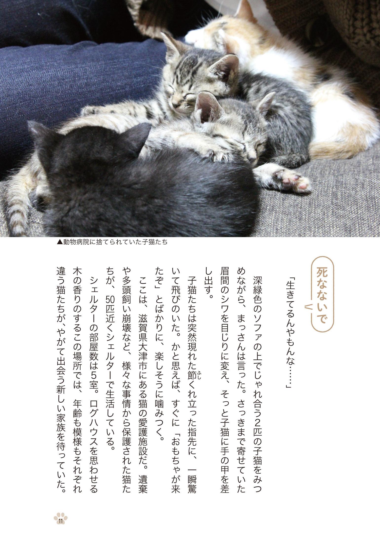 【新刊のご紹介】咲セリさん『優しい手としっぽ』_f0357923_15593191.jpg