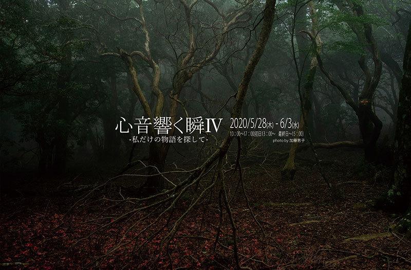 心音 響く瞬Ⅳ─私だけの物語を探して─(静岡)_c0142549_16532618.jpg