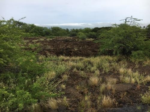 ハワイの旅\'18~レンタカー四苦八苦!_e0326953_22274663.jpg