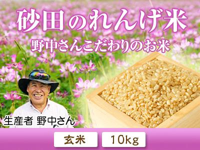 れんげを肥料に使い無農薬栽培の「七城町砂田のこだわりれんげ米」残りわずか!れんげの花咲く様子(2020)_a0254656_17293226.jpg