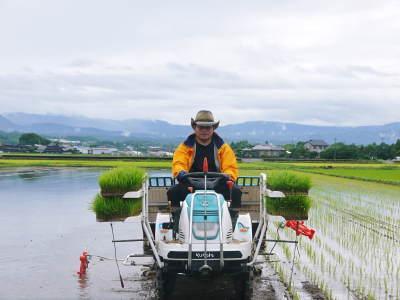 れんげを肥料に使い無農薬栽培の「七城町砂田のこだわりれんげ米」残りわずか!れんげの花咲く様子(2020)_a0254656_17334830.jpg