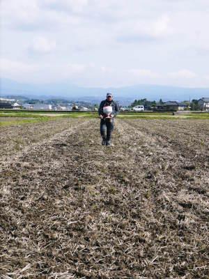れんげを肥料に使い無農薬栽培の「七城町砂田のこだわりれんげ米」残りわずか!れんげの花咲く様子(2020)_a0254656_17343890.jpg