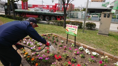 中川口緑地れいんぼーかだんの植替えR2.4.15_d0338682_14144106.jpg