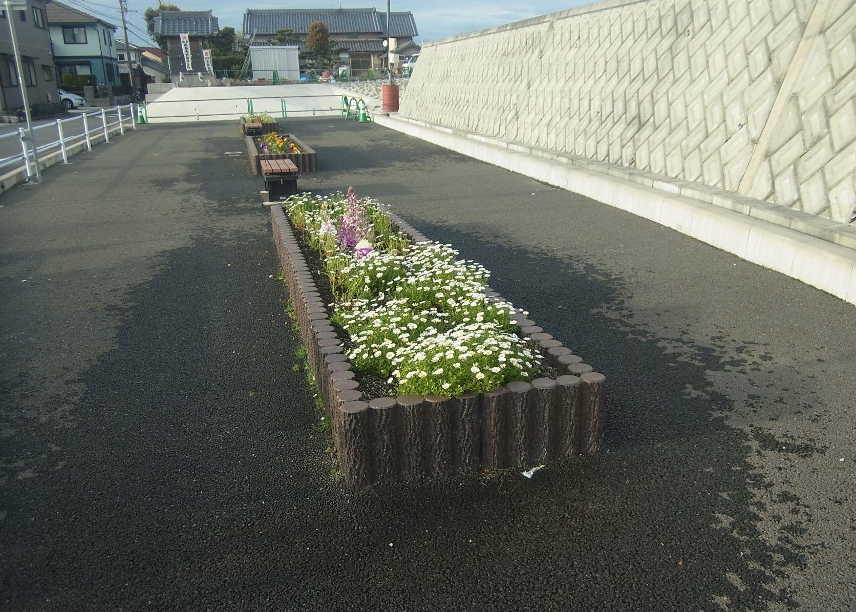 南陽学区さんに花鉢の販売を行いました!R2.3.28_d0338682_16120718.jpg