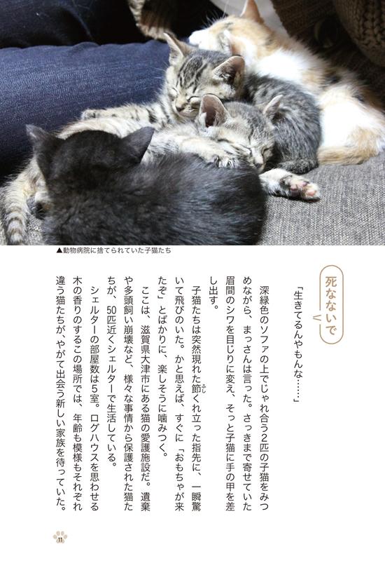 「優しい手としっぽ」本日発売されました!_a0389088_15013193.jpg