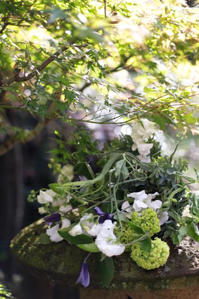 スイトピー祭り〜自然と共に_b0208604_11573125.jpg