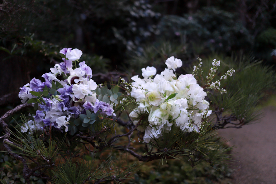 スイトピー祭り〜自然と共に_b0208604_22120283.jpg