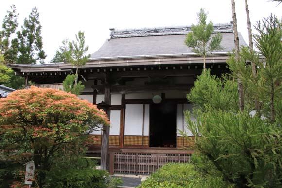 新緑の始まり2 光悦寺など_e0048413_20030062.jpg
