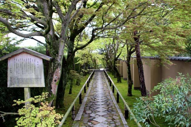 新緑の始まり2 光悦寺など_e0048413_20050514.jpg
