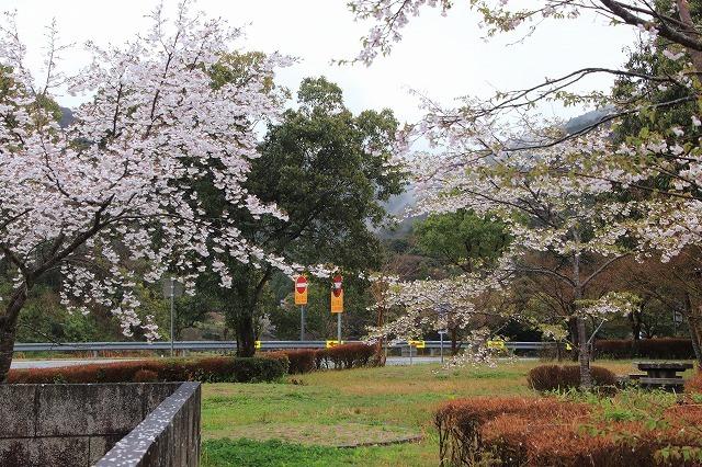 咢堂記念館への旅(撮影:3月29日)_e0321325_11083926.jpg