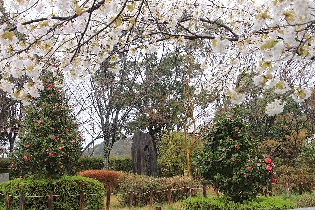 咢堂記念館への旅(撮影:3月29日)_e0321325_11094037.jpg