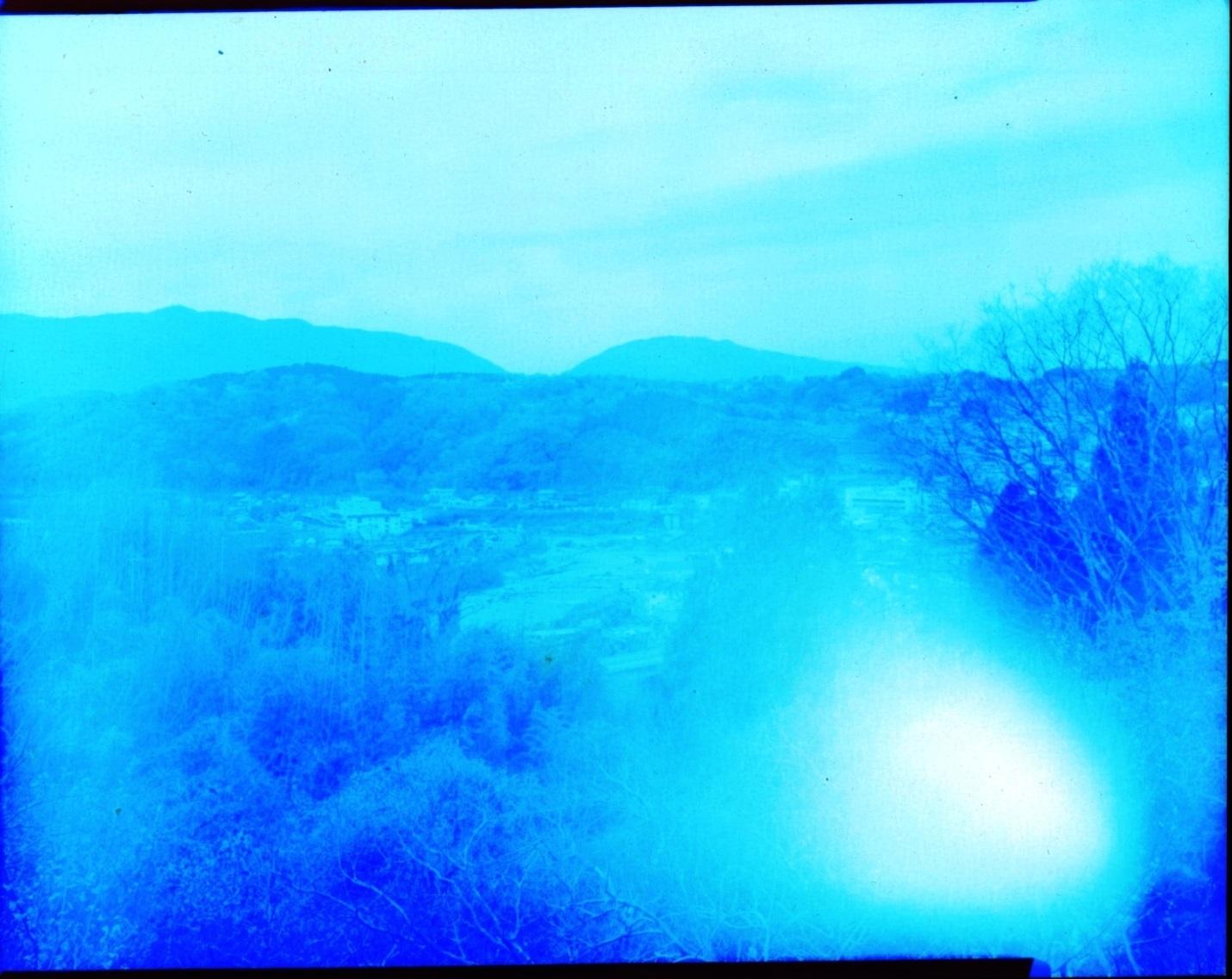 撫象さんのカラー印画紙をフイルム代りにした画像(ネガ)を  ペイントで反転してみました。 Rose-Thorn_d0138130_14182070.jpg