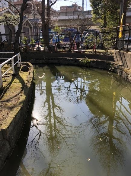 大森海岸~磐井神社の堀跡、ホテル街散策_d0250051_17362826.jpeg