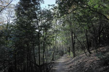 「うるおいの森」_f0185066_11023020.jpg