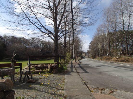 朝散歩コースの今と庭の花たち_f0064906_17042713.jpg