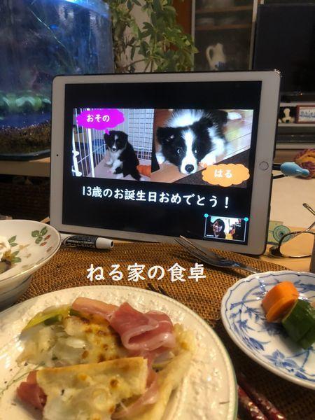 オンラインお誕生会_d0224111_17415654.jpg