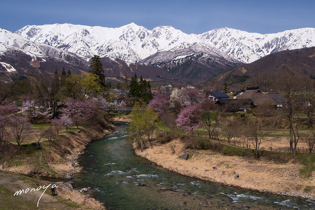 春の絶景_c0085877_06044852.jpg