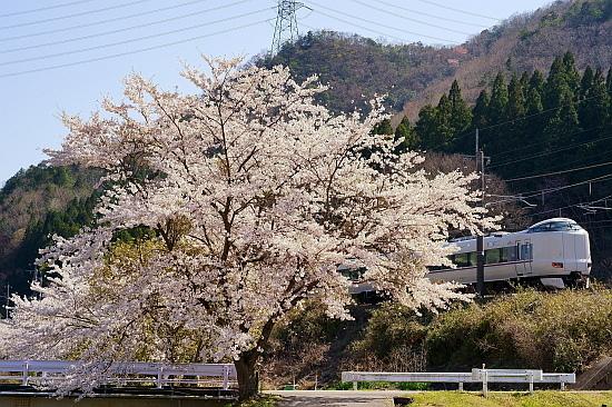 4月7日 福知山線の春模様をサクッと撮る_f0037227_22025567.jpg