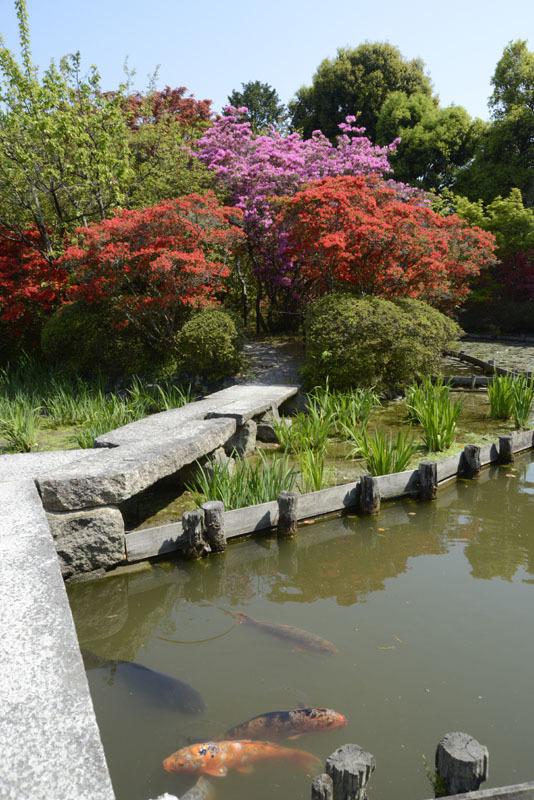 京都の想い出(改訂版)_e0367330_10042624.jpg