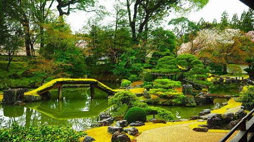 醍醐寺三宝院庭園_a0287533_23385654.jpg