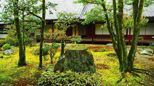 醍醐寺三宝院庭園_a0287533_23385793.jpg