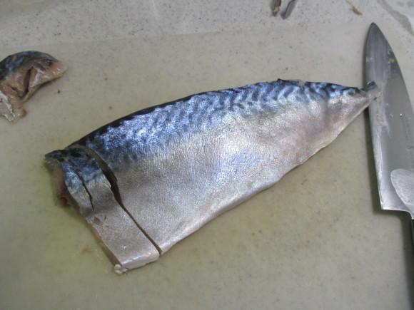 スパも今日からクローズ&Sさんからのお魚類のプレゼント_a0279743_13131231.jpg