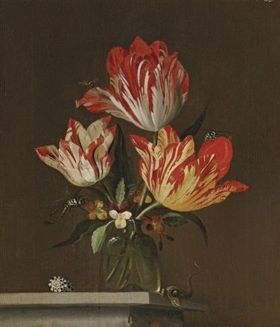 Tulips:妄想展覧会_c0084183_10055192.jpg