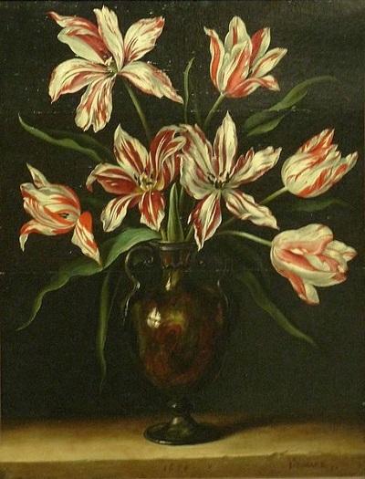Tulips:妄想展覧会_c0084183_11121150.jpg