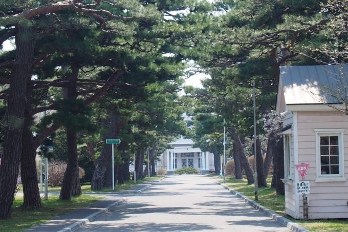 映画PとJKの函館ロケ地、遺愛学院。亀梨和也さん土屋太鳳さん、写真は二年前のです。_b0106766_07392983.jpg