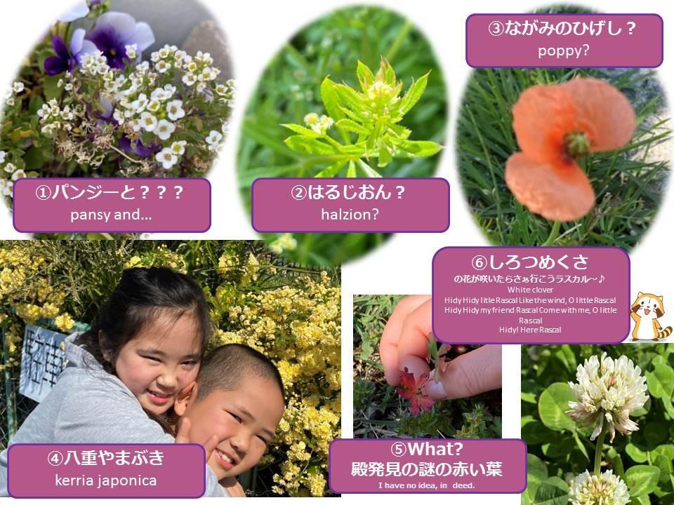 Spring is just around the corner._f0321473_11352949.jpg
