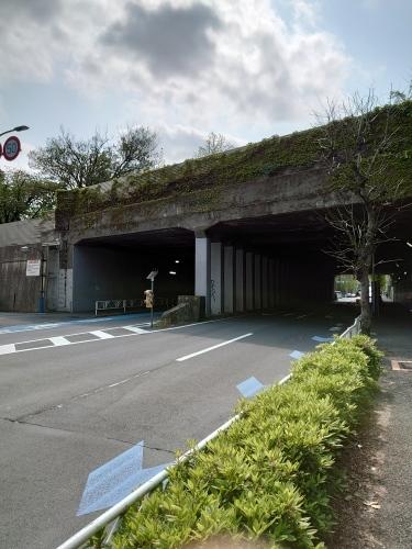 「千駄ヶ谷トンネル(オバケトンネル)と仙寿院」_a0075684_10171899.jpg