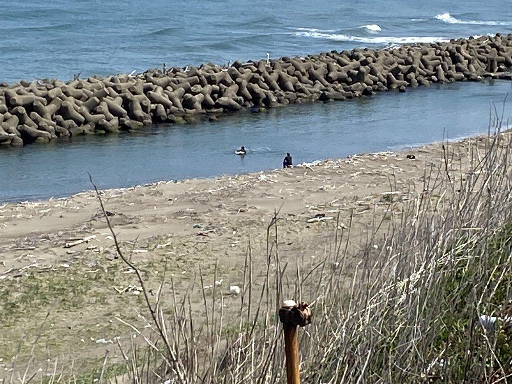 海岸の様子!_e0065084_11534970.jpg