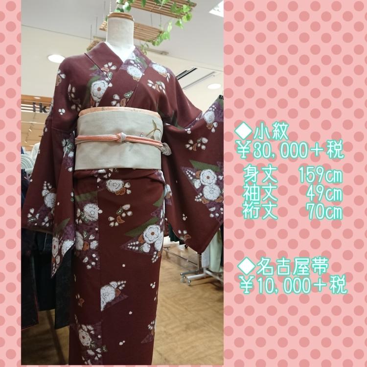 裄長小紋と刺繍名古屋帯_a0336123_11255066.jpg
