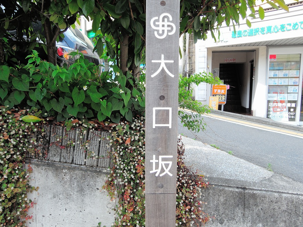 ある風景:Oguchi ▶ Myorenji@Yokohama #1_c0395834_23275859.jpg