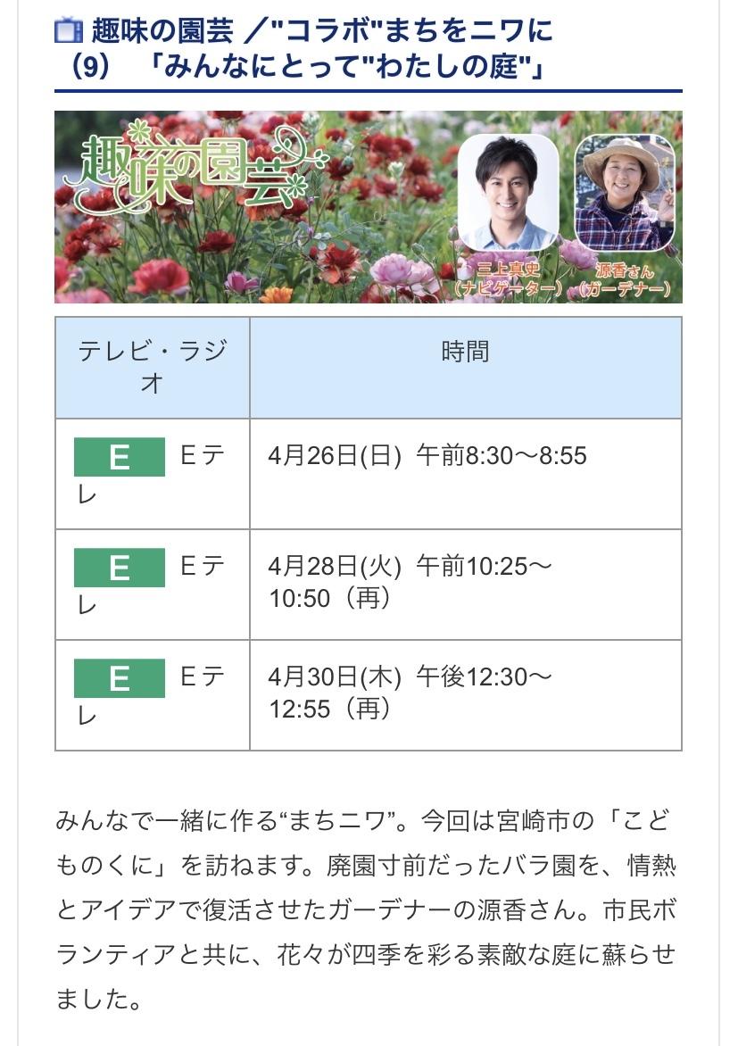 趣味の園芸 マチニワ・・・宮崎編_b0137969_06241547.jpeg