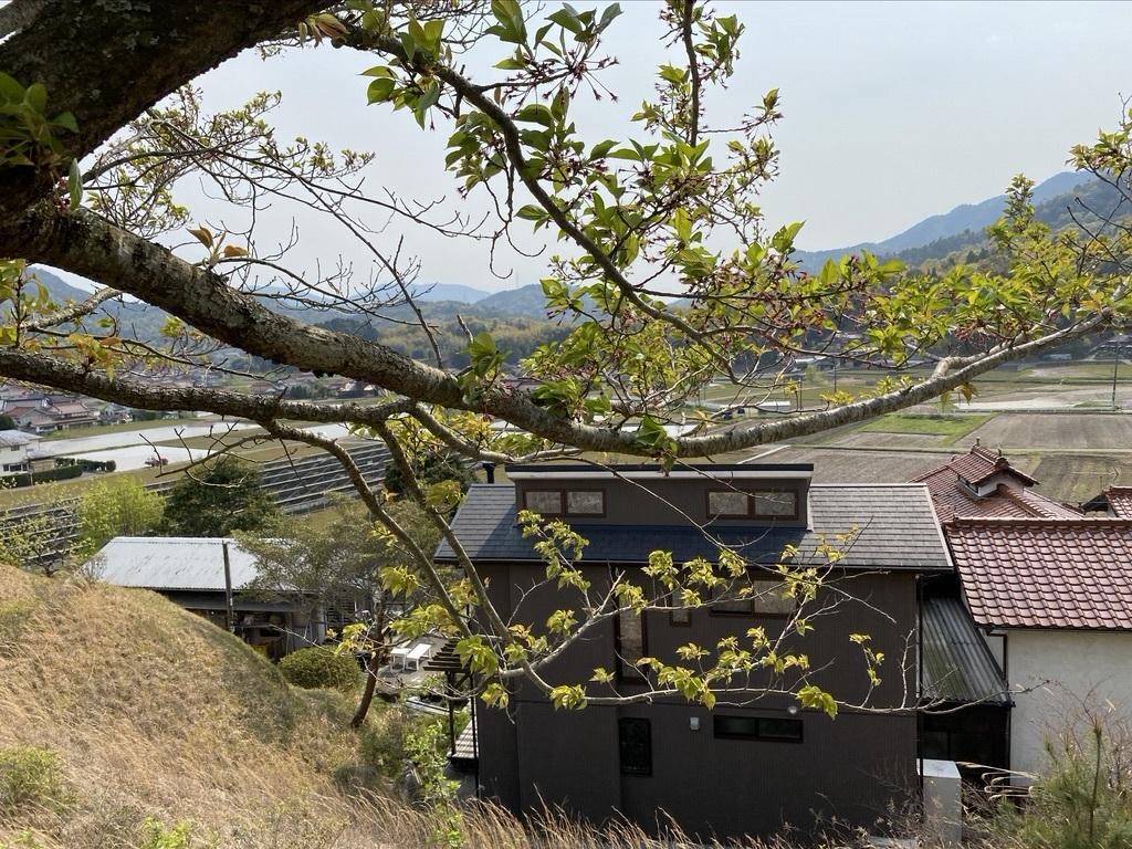 裏山を抜けて 〜昭和池の辺りの八重桜〜_c0334574_16350599.jpeg
