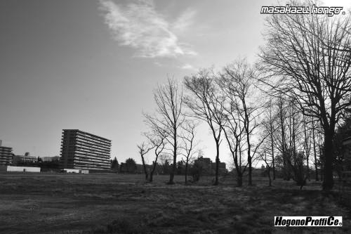 【おっ散歩カメラ放浪記:第2回】公園通りと超微粒子T-MAX_b0008475_16151610.jpg