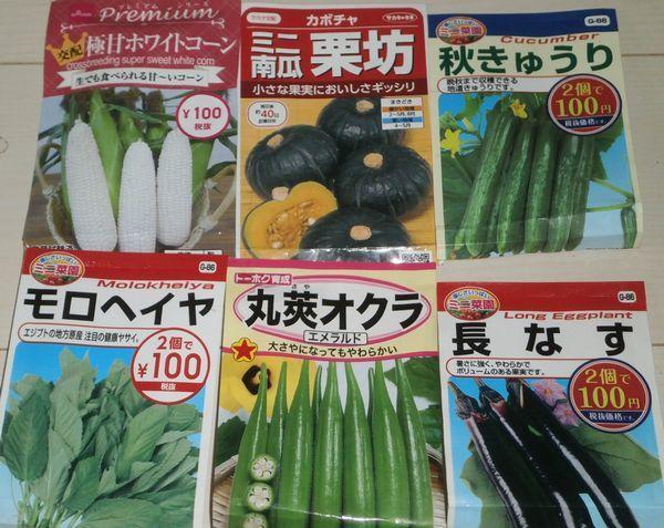 種蒔き6種とスイカの風除けビニールキャップ_f0018078_16585261.jpg